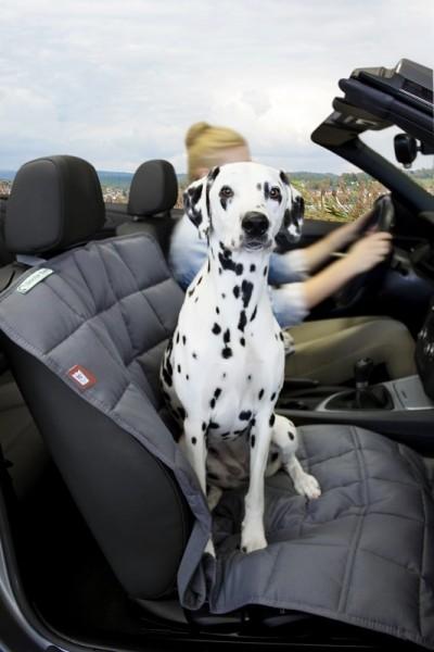 Doctor Bark Autodecke Beifahrersitz Grau