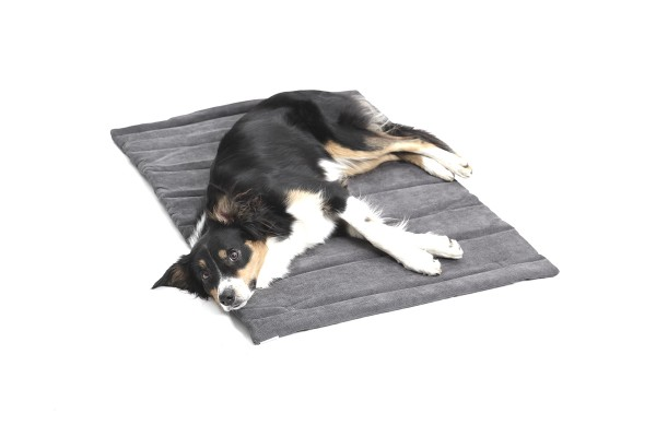 DOGS in the CITY Travel Mat Madison Grau