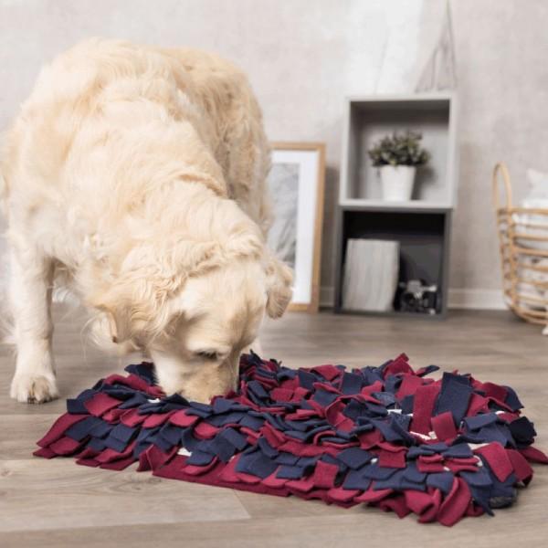 Hundespielzeug Strategie-Spiel Schnüffelteppich Level 1