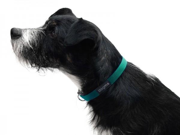 dogma Hundehalsband Little Navy
