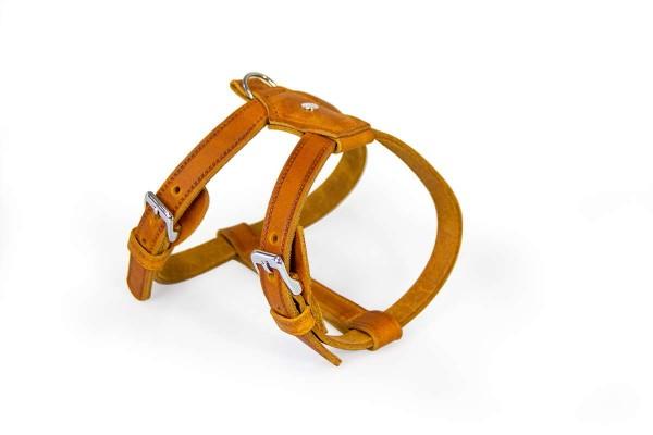 Das Lederband Geschirr Weinheim, Maroon