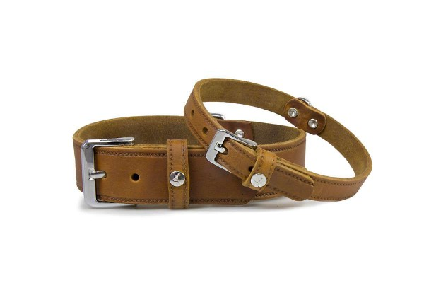 Leder-Hundehalsband Weinheim Maroon
